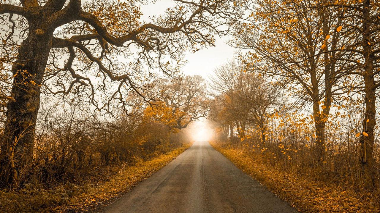 عکس جاده درباره افزودن به عمق عکس با استفاده از یک نقطه محو مربوط به ۵ اصل کلیدی برای بهبود ترکیب بندی در عکاسی منظره