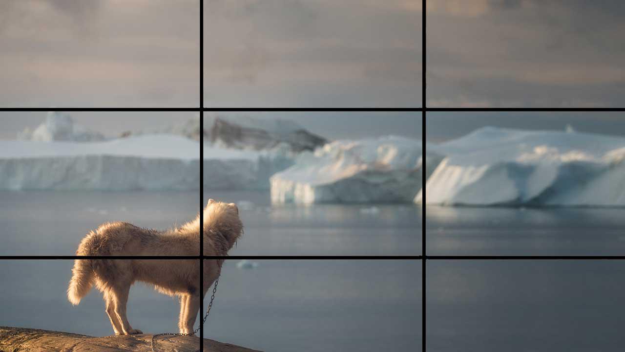 عکس دوم مربوط به مقاله ترکیب بندی از آموزش عکاسی