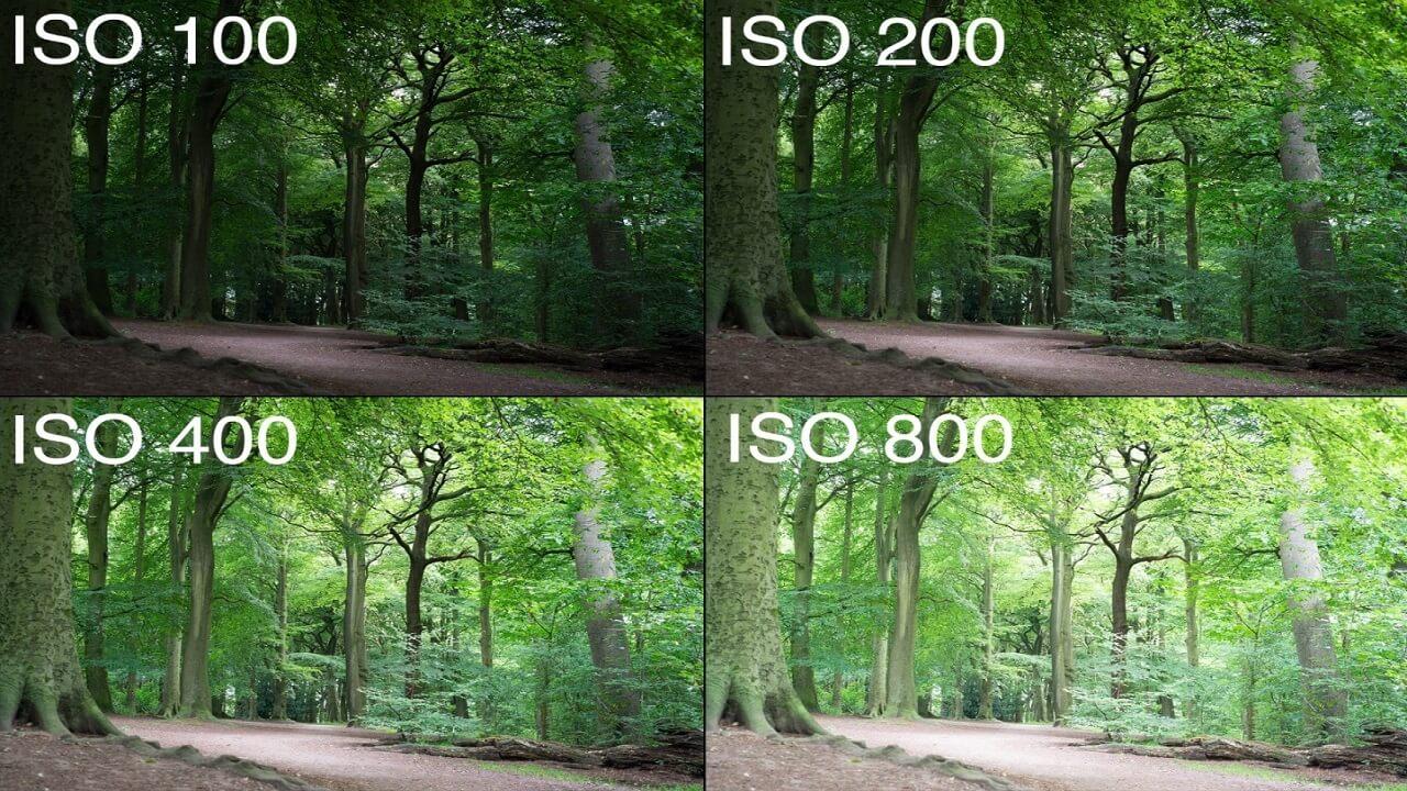 عکس توضیح ایزو مربوط به مقاله مثلث نوردهی در عکاسی